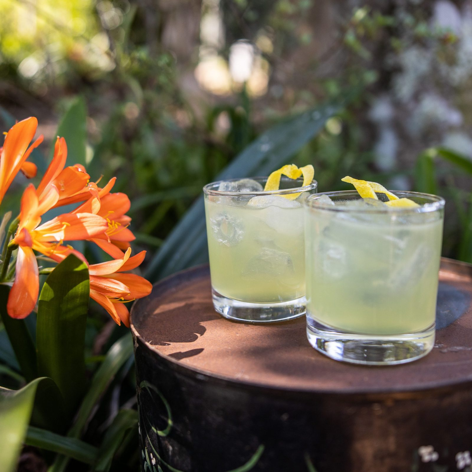Lemon Myrtle Sour
